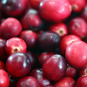 organic canberry